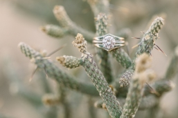 Orange-County-Wedding-Photographer-Joshua-Tree-Engagement-Brianna-Caster-and-Co-Photographers-39