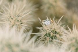 Orange-County-Wedding-Photographer-Joshua-Tree-Engagement-Brianna-Caster-and-Co-Photographers-61